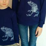 blauwe-pijlgifkikker
