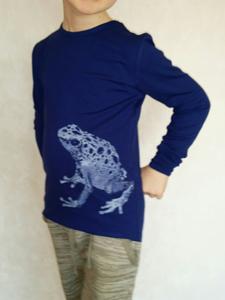 modelblauwepijlgifkikker